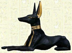 Anubis sous la forme du chacal