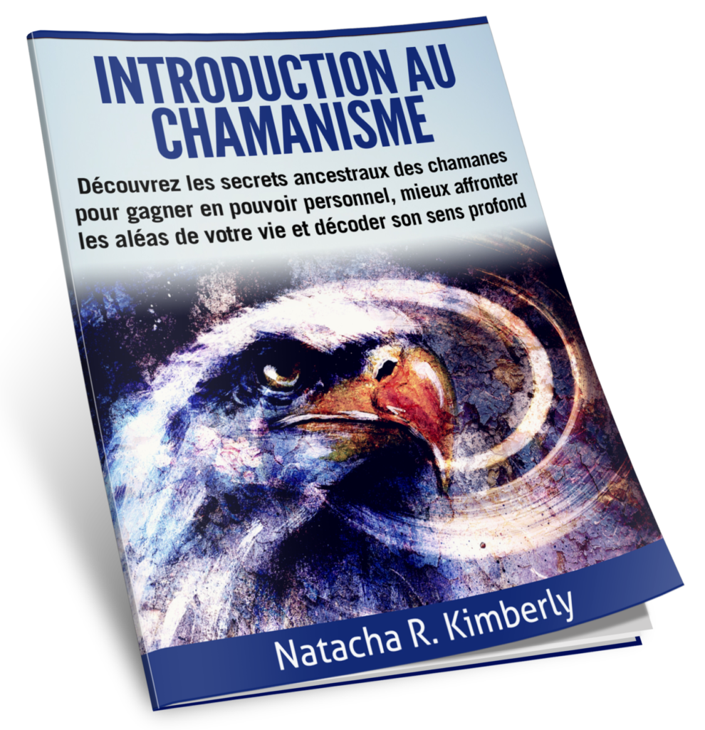 Introduction au chamanisme et aux 6 piliers de la pratique chamanisme