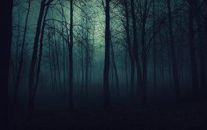 Forêt hostile