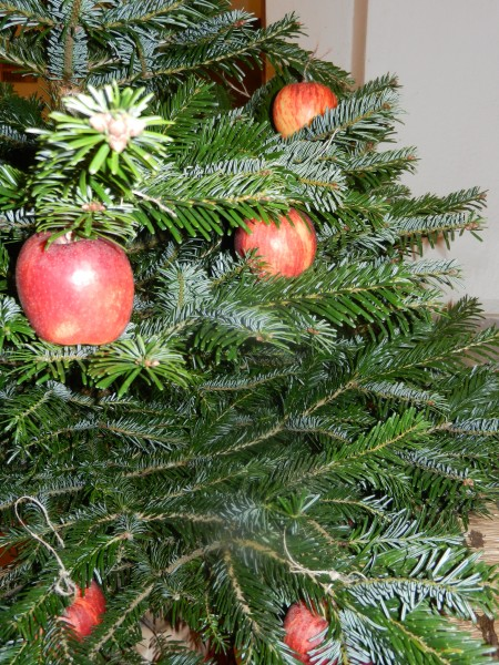 Le sapin de Noël antique