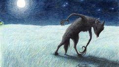 Skin Walker dans la nuit