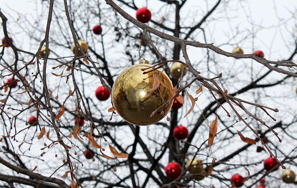 Arbre de Noël extérieur